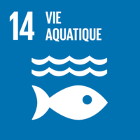 ODD #14 - Protection de la faune et flore aquatiques