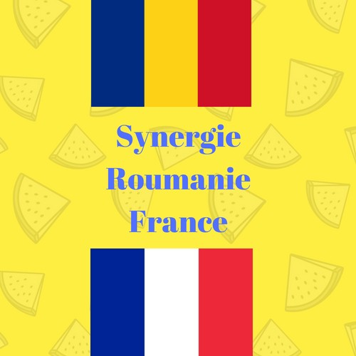 Synergie Roumanie France